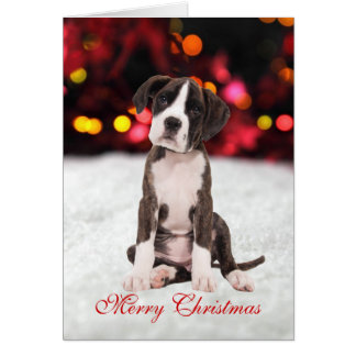 Boxer puppy dog snow cute custom Christmas Card
