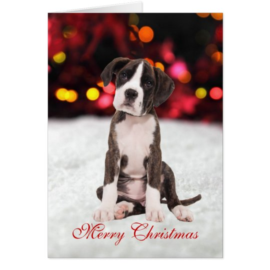 Boxer puppy dog snow cute custom Christmas Card