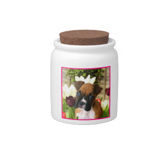 Boxer puppy in tulips candy jar