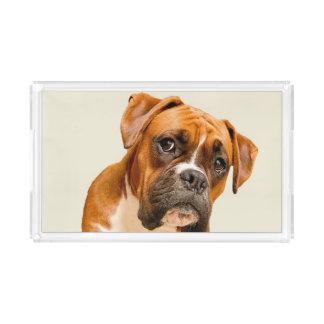 Boxer puppy on ivory cream backdrop. acrylic tray