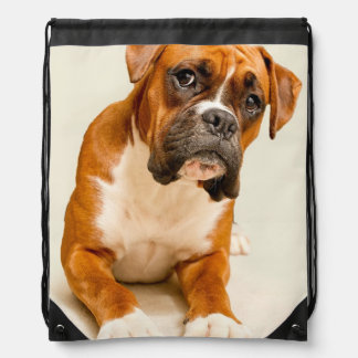 Boxer puppy on ivory cream backdrop. drawstring bag
