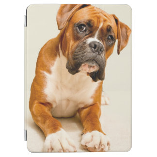 Boxer puppy on ivory cream backdrop. iPad air cover