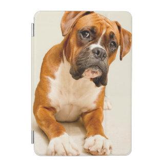 Boxer puppy on ivory cream backdrop. iPad mini cover