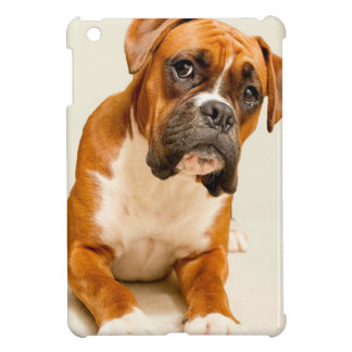 Boxer puppy on ivory cream backdrop. iPad mini cover