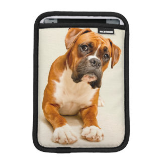 Boxer puppy on ivory cream backdrop. iPad mini sleeve