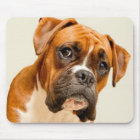 Boxer puppy on ivory cream backdrop. mouse mat