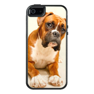 Boxer puppy on ivory cream backdrop. OtterBox iPhone 5/5s/SE case