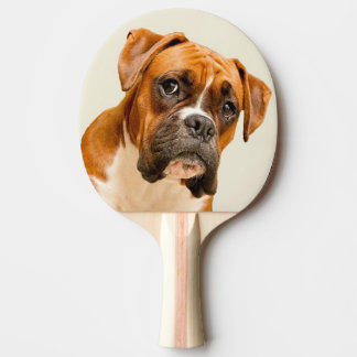 Boxer puppy on ivory cream backdrop. ping pong paddle