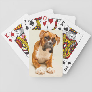 Boxer puppy on ivory cream backdrop. playing cards