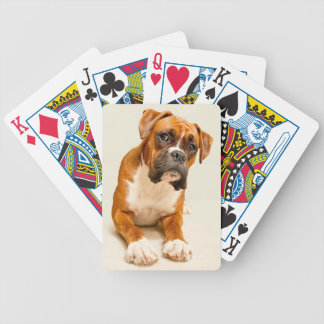 Boxer puppy on ivory cream backdrop. poker deck