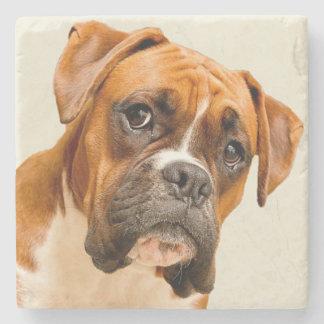 Boxer puppy on ivory cream backdrop. stone beverage coaster