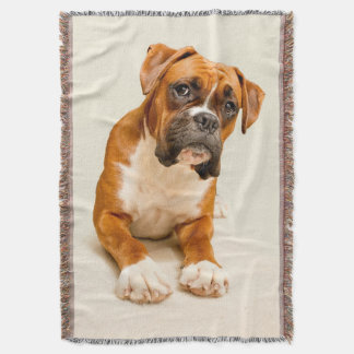 Boxer puppy on ivory cream backdrop. throw blanket