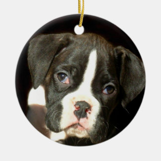 Boxer puppy ornament