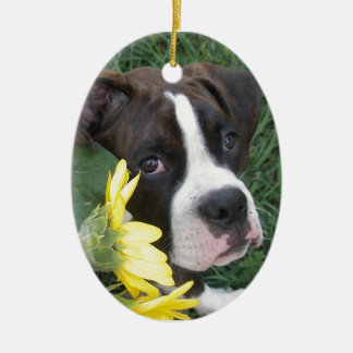 Boxer Puppy Peeking around Sunflowers Christmas Ornament