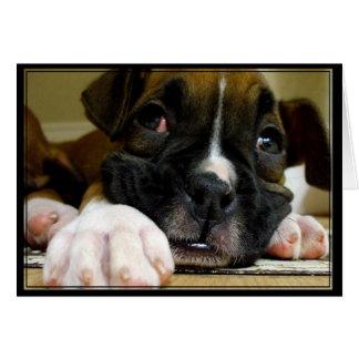 Boxer Puppy Postcard