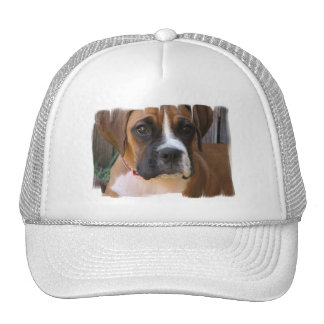 Boxer Rescue Baseball Hat