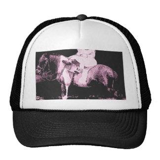 boxer rider cap