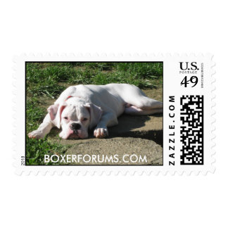 Boxer Stamps