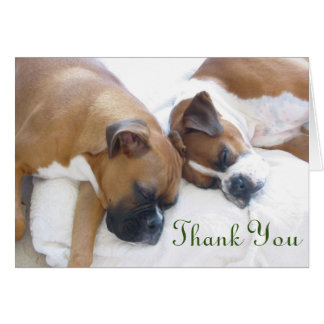 Boxer Thank You Cards