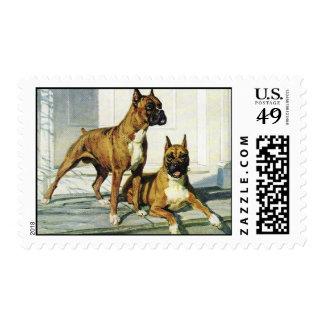 Boxer Vintage Postage Stamp