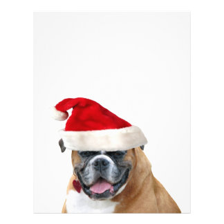Boxer with a Santa hat Custom Flyer
