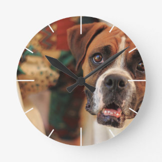 boxer's face weeping of friendly behavior round clock