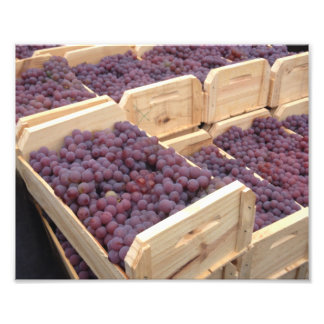 Boxes of grapes photograph