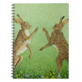Boxing clever notebooks