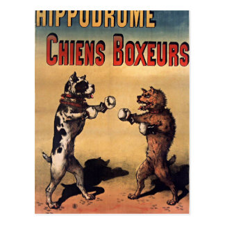 Boxing dogs retro style postcard