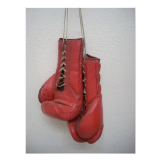 Boxing Gloves Huge Canvas Poster