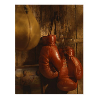 Boxing Gloves Post Cards