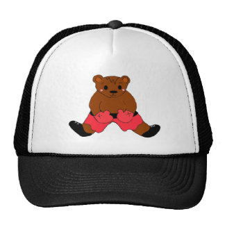 Boxing Teddybear in Red Cap