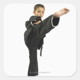 Boy 6-8 in karate outfit kicking sticker
