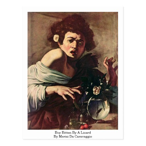 Boy Bitten By A Lizard By Merisi Da Caravaggio Post Cards
