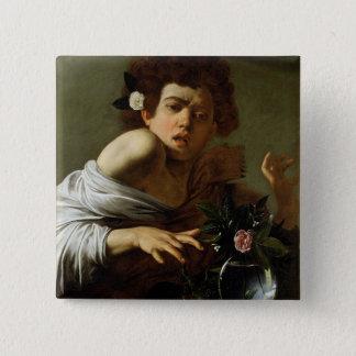 Boy Bitten by a Lizard, c.1595-1600 (oil on canvas 15 Cm Square Badge