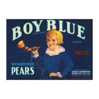Boy Blue Pear Crate Label Stretched Canvas Prints