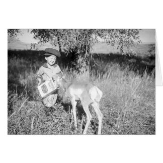 Boy feeding antelope by hand card