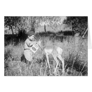 Boy feeding antelope card