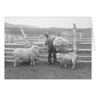 Boy holding up a bundle of wool card