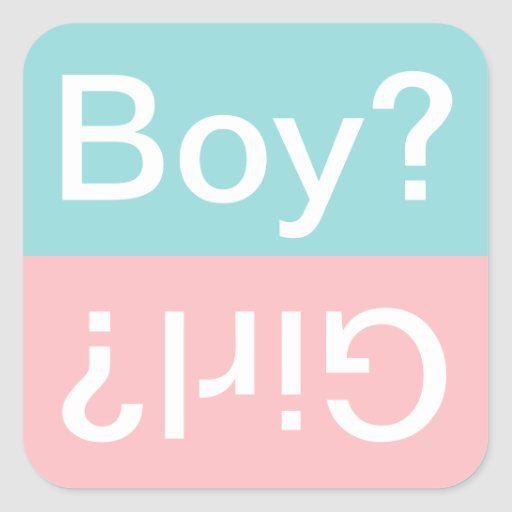 Boy or Girl?   Gender Reveal Party Favor Stickers