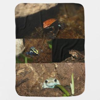 Boy's Bullfrog and Tree Frog Collection Pramblankets