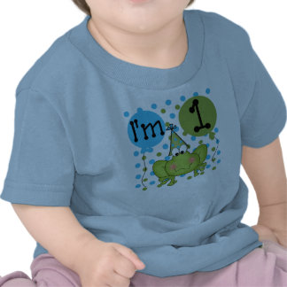 Boys Frog First Birthday Tee Shirt