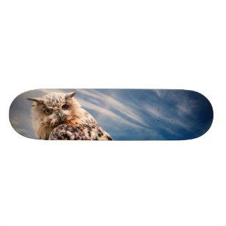 Boy's Owl Skateboard