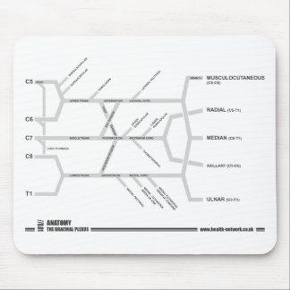 Brachial Plexus mouse mat