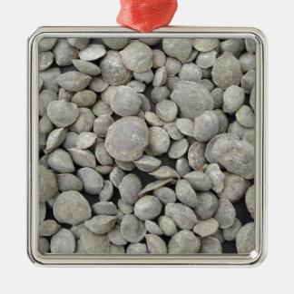 Brachiopod shell fossils pattern christmas ornament