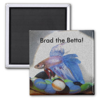 Brad the Betta! Magnet
