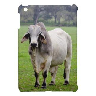 Brahman (aka. Brahma) Bull in Field Cover For The iPad Mini