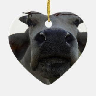 BRAHMAN COW STEER RURAL QUEENSLAND AUSTRALIA CHRISTMAS ORNAMENT