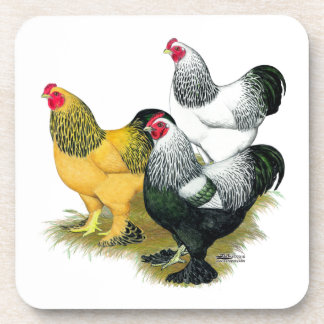 Brahmas Three Roosters Coaster