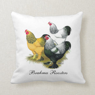 Brahmas Three Roosters Cushion